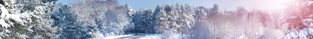 vinter väg